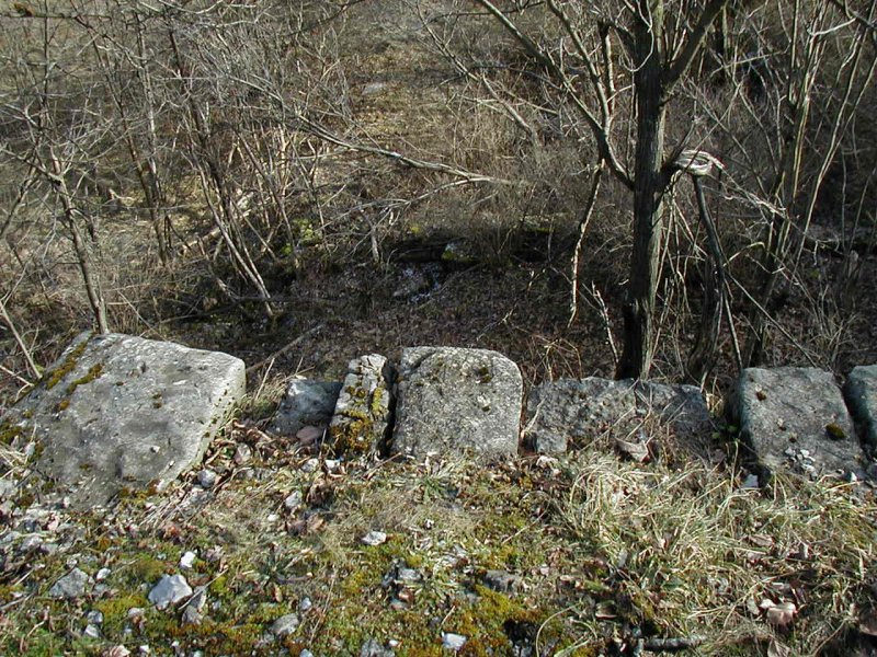 Remains of northern end ramp of long barn