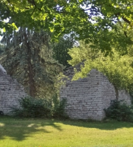 Ruins in Felts Mills